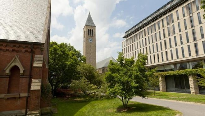 Cornell University is the largest not-for-profit institution in the region.