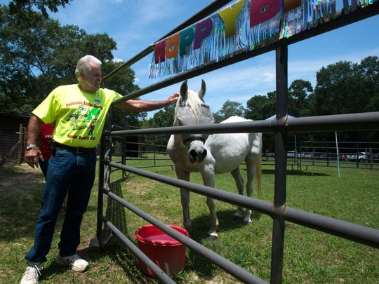 Panhandle Equine Rescue supporter, Jesse Casey, left, helps to celebrate the birthday of Sky, a 32-year-old horse, with friends and supporters of the organization at a farm in Cantonment Saturday afternoon.