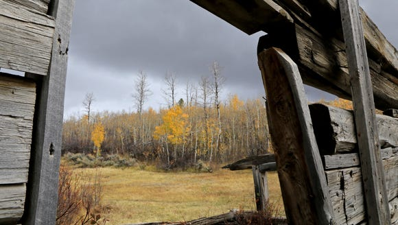 Fall colors show through the window of a dilapidated