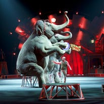 Animal trainer Ryan Henning parades the elephants around the ring for their final performance in Wilkes-Barre, Pa.,  May 1, 2016.