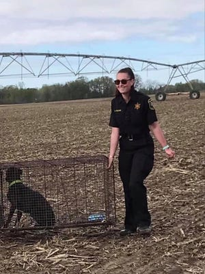 Late Animal Control Officer Darrian Young carries a caged dog to bring to Monroe County Animal Control. Young died from injuries sustained in a June 4 crash with a suspected drunk driver. Her radio call sign has been retired in her honor.