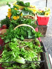 A range of the produce available at Anythyme Farm's CSA last year.