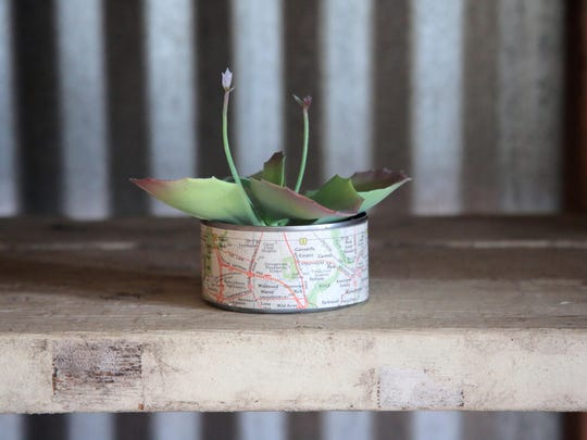 A map transforms a tuna can into a cute tiny planter, perfect for planting succulents.