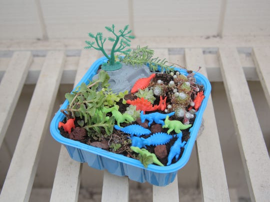 Recycle a plastic produce basket into a tiny paleolithic garden.