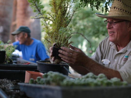 Bob Linstead, plant propagator at The Living Desert, shows visitors the variety of plants at zoo during Desert Horticultural Society of the Coachella Valley's ninth annual Desert Garden Community Day. This year's event is being held Oct. 26, 2019.