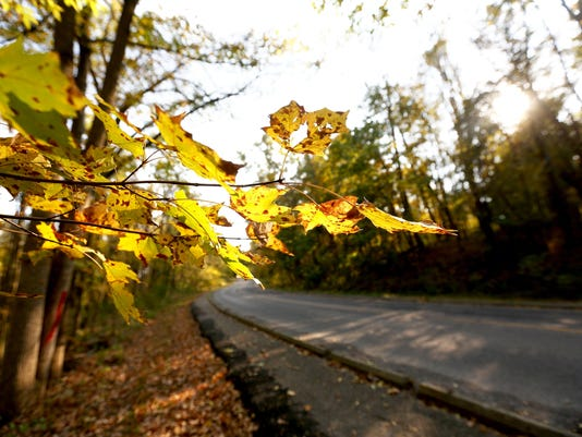 fall.colors1