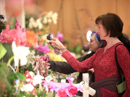 2015 Orchid Show