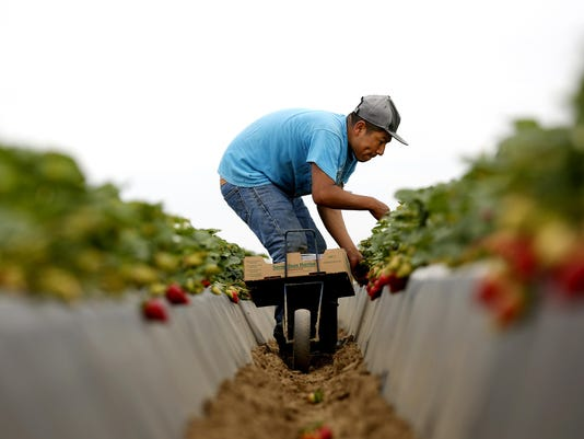 To feed the nation, California farmers must adapt to a warming climate, study says