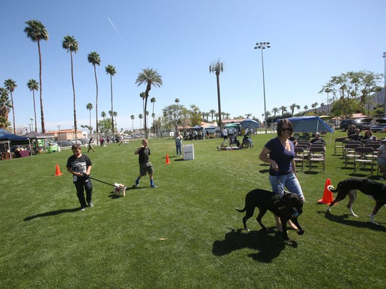 "Dogs owners brought their pets to the ""Strut your Mutt"" dog event held at the Frances Hack Park in La Quinta on Saturday."