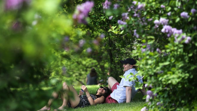Liz Yung of Greece and  Jake Miller of East Rochester, enjoy the shade among the lilacs Wednesday during the Lilacs Festival.