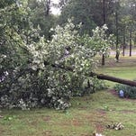 #BeOn11 Very high winds blew through Cabot just awhile ago!!! Favorite shade tree