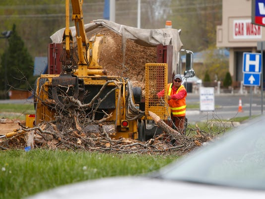Asbury Circle tree clearing