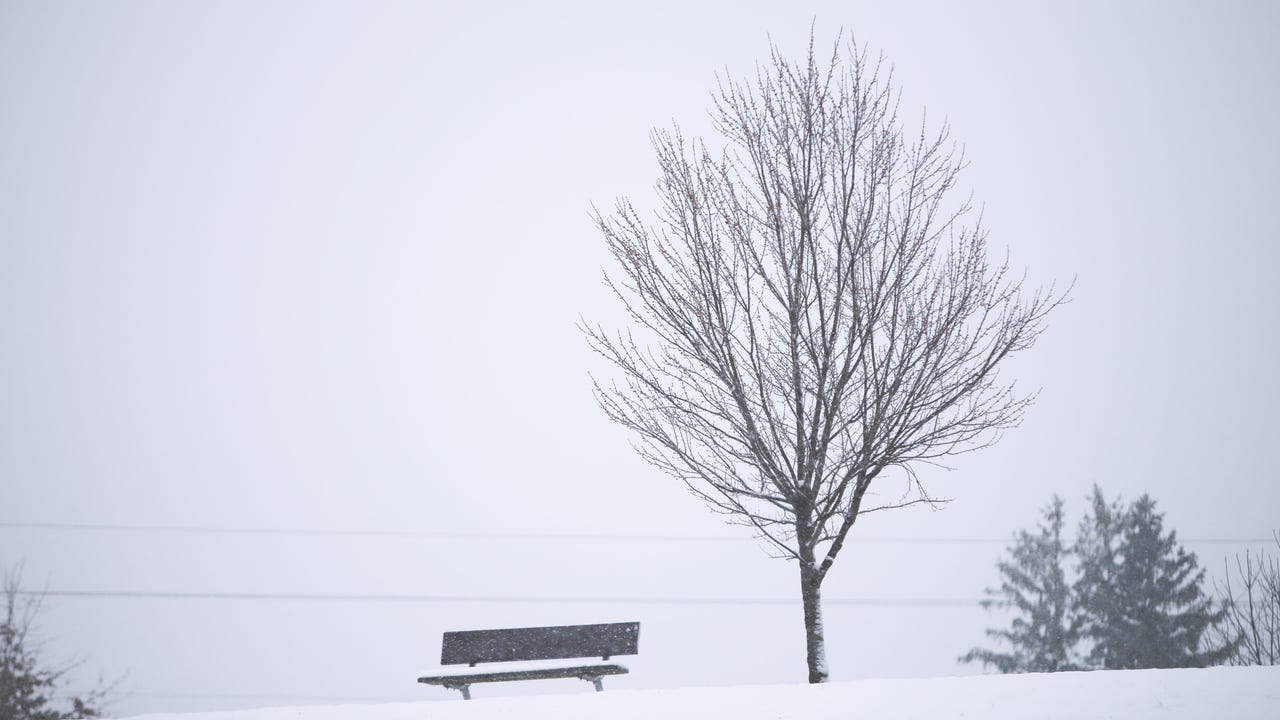 Take time and enjoy the snowy scenery