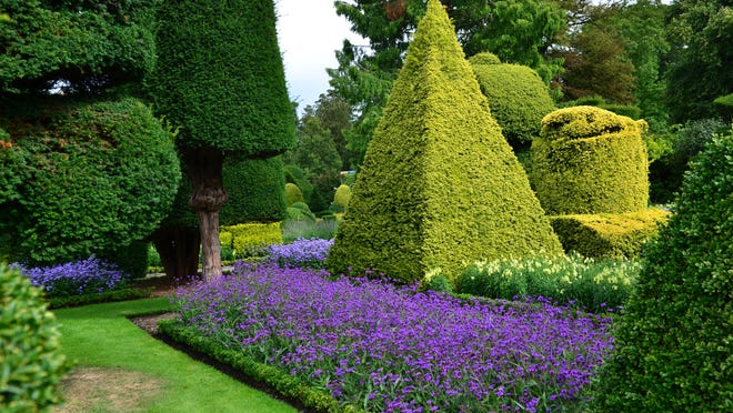 Levens Hall Garden replaced the dwarf boxwoods with dwarf hollies.