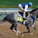 Mohaymen works out Friday morning over the Churchill Downs track.