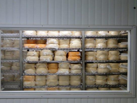 Cheesemaking at Dakin Dairy in Myakka City, Florida,