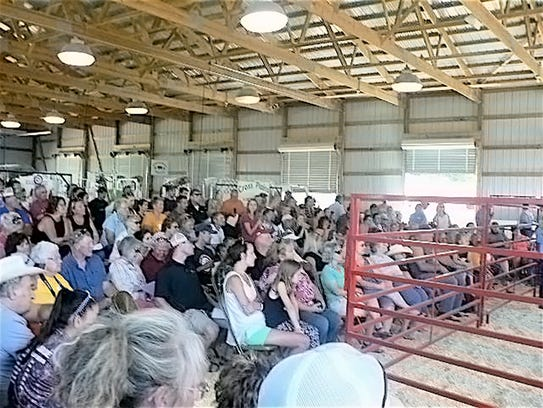 Packed bleachers await the start of the Market Animal