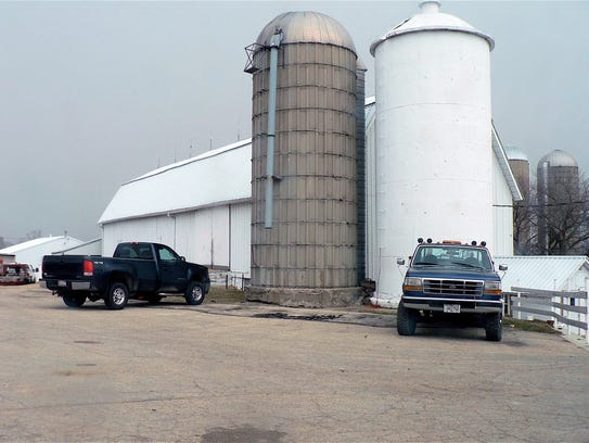 The dairy barn is used only for milking.