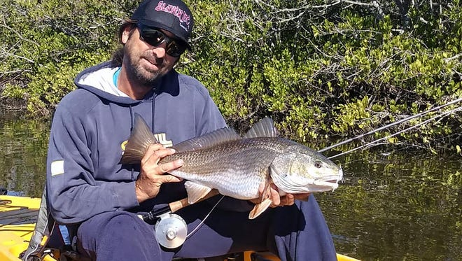 Capt. Alex Gorichky of Local Lines Guide Service in Merritt Island said a little cool weather would be welcomed back so he can fly cast to redfish over dark bottom along mangroves. CONTRIBUTED PHOTO BY CHARLES LEVI