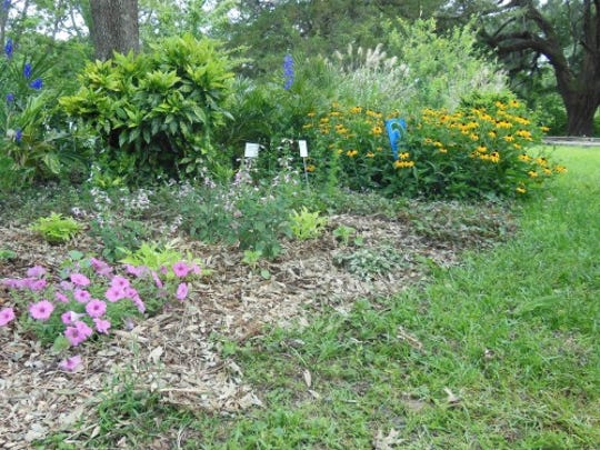 By following FFL principles, gardeners can create beautiful landscapes that require less maintenance and benefit the environment.
