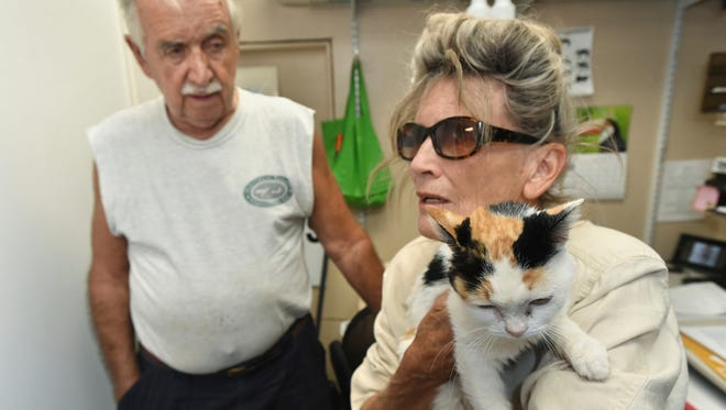 In this Monday Aug. 7, 2017 photo, Ana Fontana holds her cat, Trotsy, as she and partner Steve Krueger, left, are reunited with the cat in Fort Walton Beach, Fla. Krueger and Fontana were traveling from Arizona to New Jersey when they stopped for a meal in Crestview, Fla., on June 18, 2017. Trotsy escaped from the couple's car and was lost before an animal control officer trapped her and notified the couple, who traveled from New Jersey to pick up the cat.