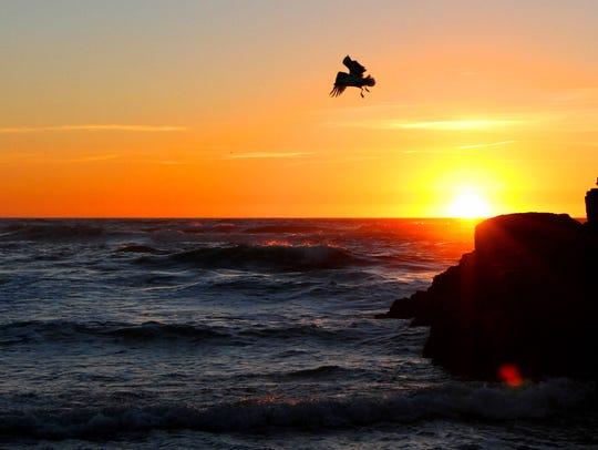 Short Beach, on the Oregon Coast, at sunset.