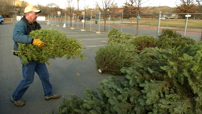 Richard Evans of Sparks prepares to toss some Christmas tree branches into the pile at the recycling drop-off site at Sparks's Shadow Mountain Sport Complex in December 2005.