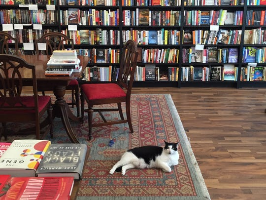 Pages' resident cat is Pip.
