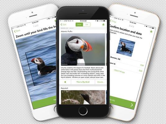 The Bird Watcher: Free app to help identify birds