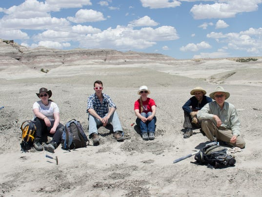 after the fossil discovery