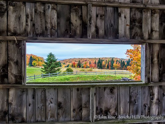 Framed Vermont Foliage
