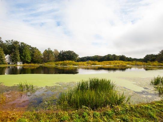 Burnt Mill Pond in Vineland on Tuesday, September 26.