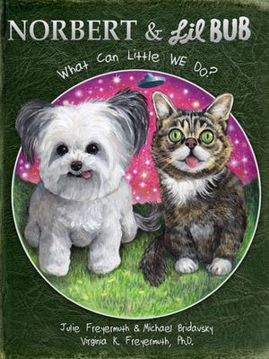 Pet-lebrities Lil BUB and Norbert are teaming up for a children's book.