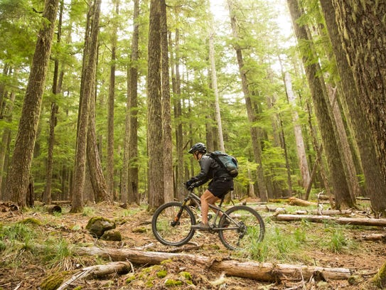 The Fremont National Recreation Trail makes up a large