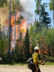 A wildland firefighter is pictured in front of the