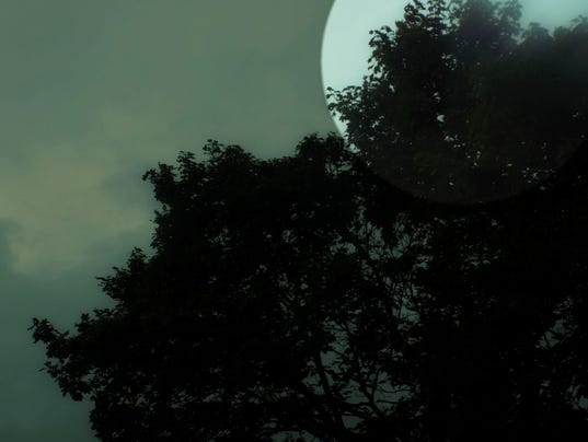 635815441029526191-MadiCohen.moon