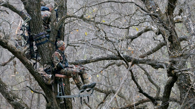 Patrick Perkins, top, and Nick Mason patiently wait in deer stands during a bow hunt last Monday. The Afghanistan war veterans say hunting in the woods is therapeutic.