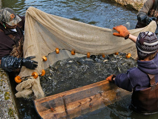 Durkin expanding fish farms to public water a bad idea for Wisconsin fish farms