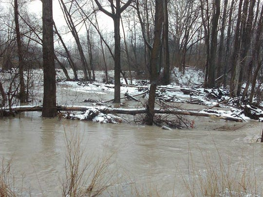 A wooded area in Newfield is inundated with flood waters from a storm on Tuesday.