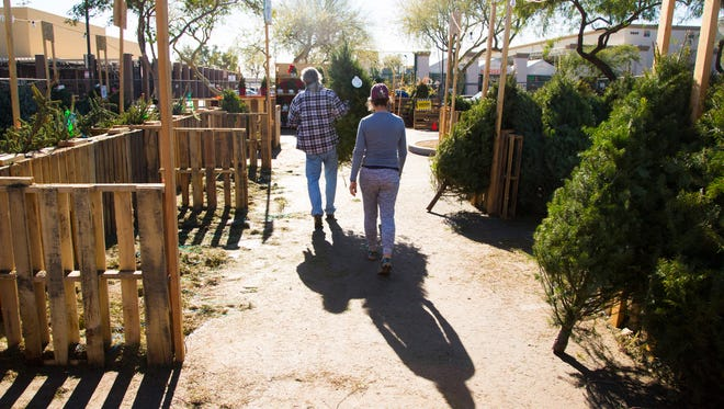 Bob Beucle and Mary Jo Kelsey pick out a Douglas Fir to take home for their Christmas Tree at the Home Depot Christmas Tree lot on Thomas Rd. on December 18, 2016 in Phoenix, Ariz.