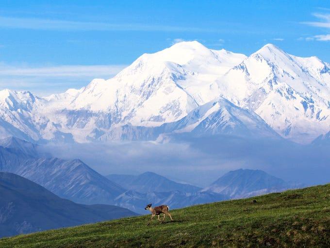 fb889e8d802 Denali National Park and Preserve is six million acres