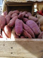 Purple sweet potatoes from Gaining Ground Farm.