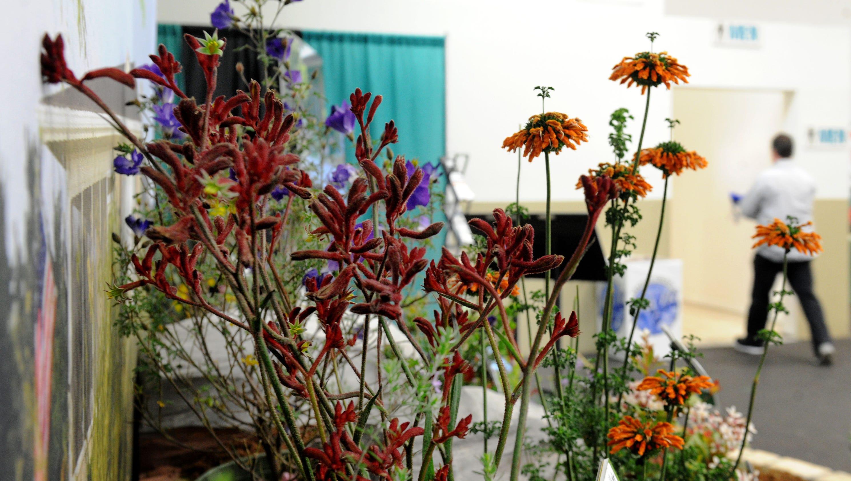 Gallery Home Garden Show Runs Until Sunday