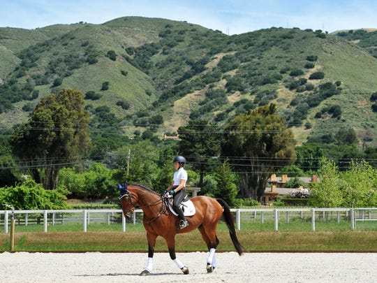 Visalia-native Lauren Billys and her Irish sport horse Castle Larchfield Purdy train in Carmel Valley on Tuesday, April 19, 2016.