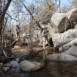 Hike: Wolf Creek falls run when the snow melts