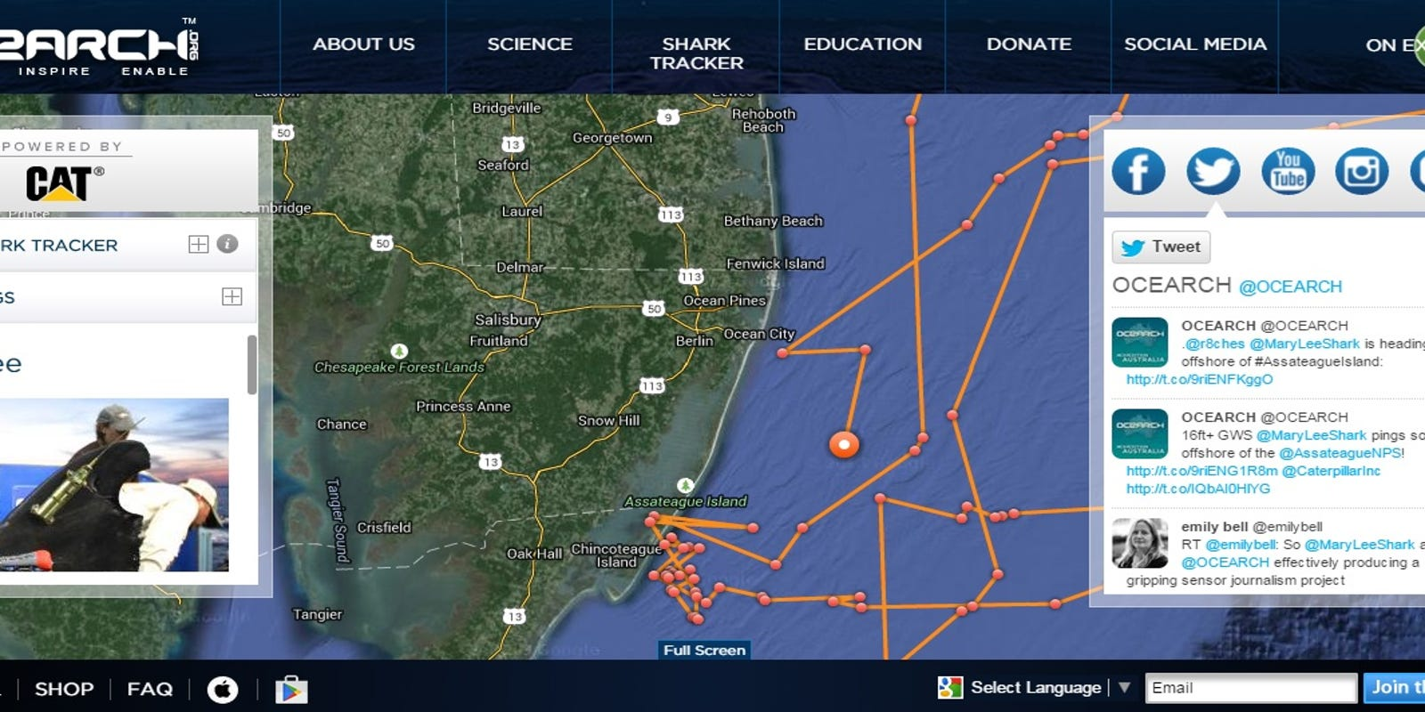 She's back! The great white shark Mary Lee, that is