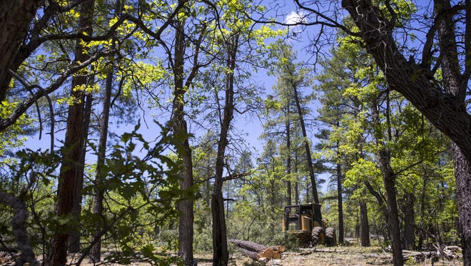 A power plant that will run on wood has received an air-quality permit from the state.
