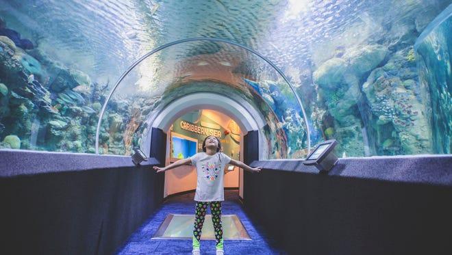 Katelyn at Discovery World aquarium