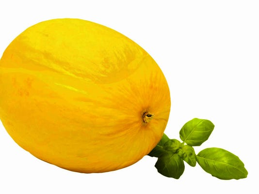 6fa3c84a2 Honeydew melon tips