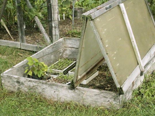 Gardening Coldframe
